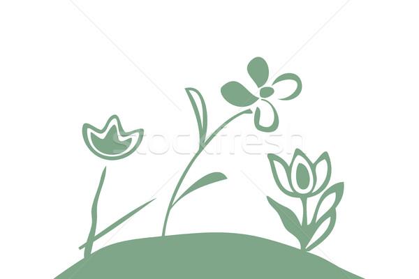 Wektora gryzmolić ilustracja wzór proste kwiaty Zdjęcia stock © cosveta