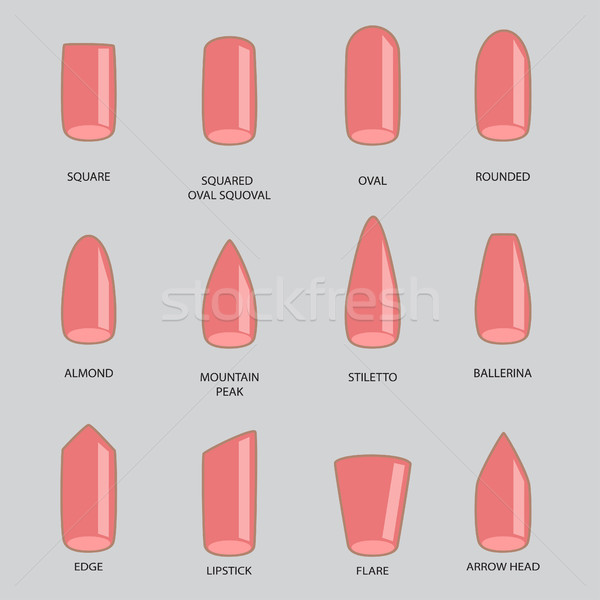 Set of different shapes of nails on gray. Nail shape icons. Mani Stock photo © cosveta