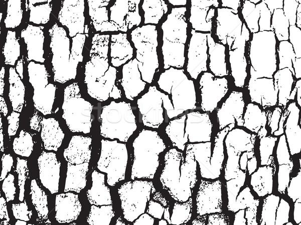 Havlama doku siyah beyaz renk renkler Stok fotoğraf © cosveta