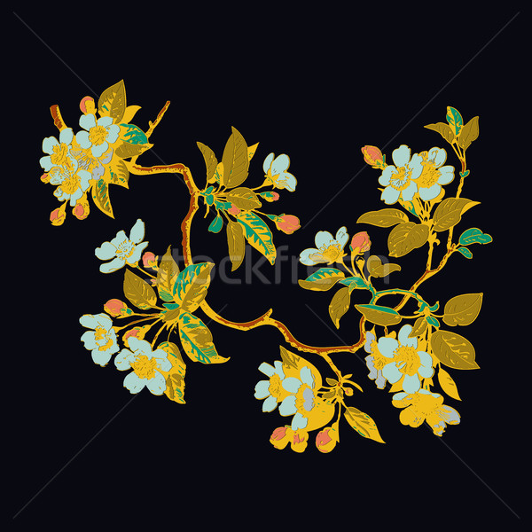 Botanical branches with leaves and flowers on white background.  Stock photo © cosveta