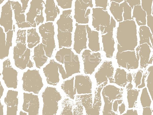 écorce texture beige couleurs intérieur Photo stock © cosveta