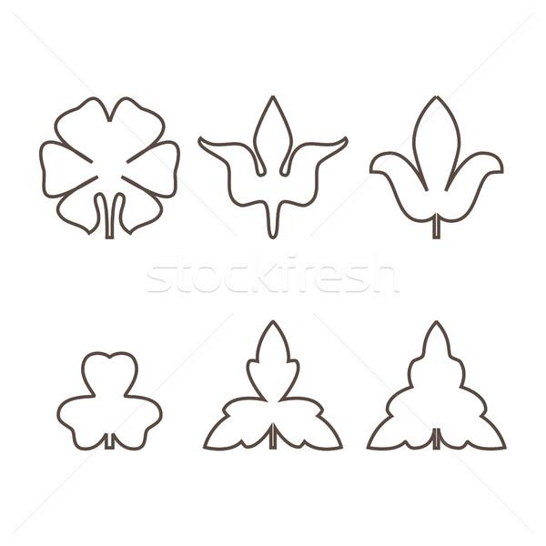 Decorativo hojas aislado blanco negro Foto stock © cosveta