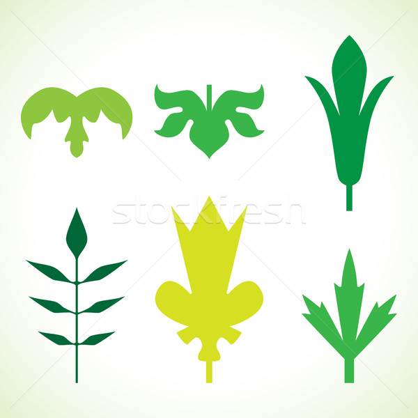 Dekoracyjny zielone liście wzór zestaw odizolowany biały Zdjęcia stock © cosveta
