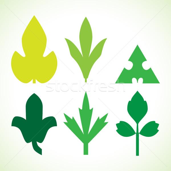 Foto d'archivio: Decorativo · foglie · verdi · pattern · set · isolato · bianco