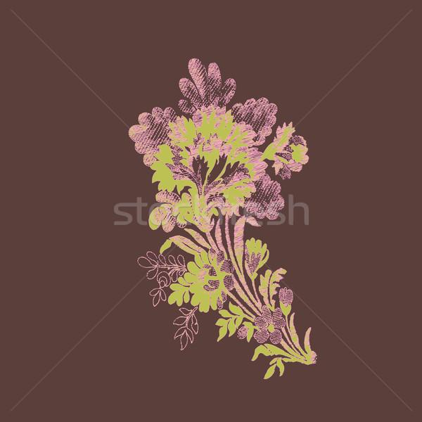 красивой рисованной цветы букет вектора элемент Сток-фото © cosveta
