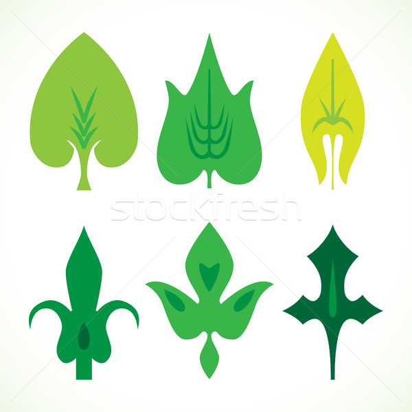 Decorative green leaves pattern set isolated on white vector. Va Stock photo © cosveta