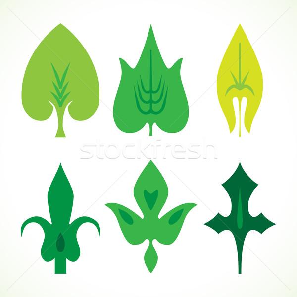 Foto stock: Decorativo · folhas · verdes · padrão · conjunto · isolado · branco