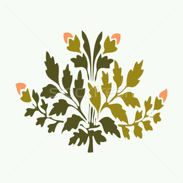 Vector illustration symmetric blooming plant with flowers and leaf on white background Stock photo © cosveta