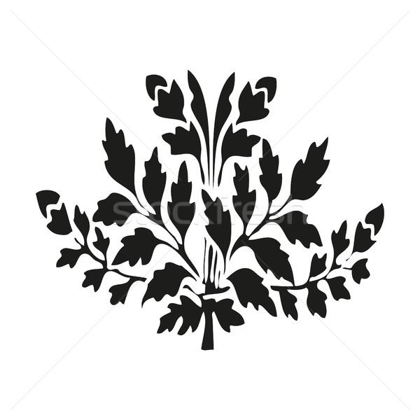 対称の 工場 花 葉 白 ストックフォト © cosveta