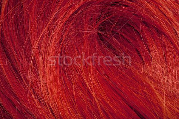 Real Human Hair  Stock photo © courtyardpix