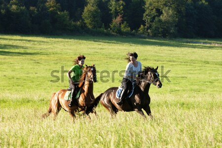 Horseback Riding Lessons - Woman Leading Two Horses with Boys  Stock photo © courtyardpix