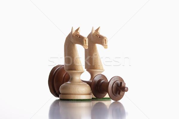 chess knights Stock photo © courtyardpix