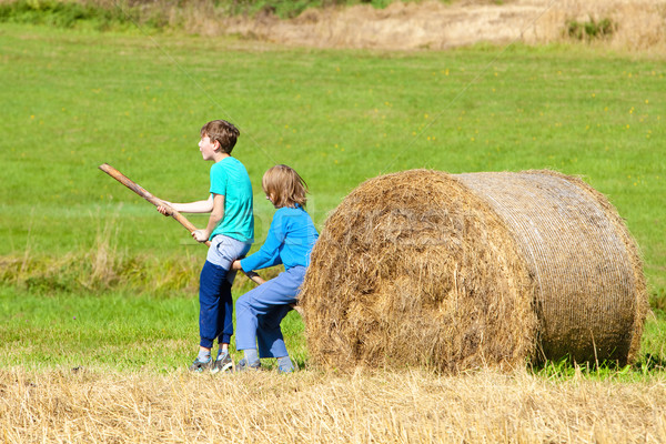 Two Boys Moving Bale of Hay with Stick as a Lever Stock photo © courtyardpix