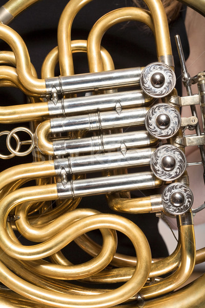detail of french horn Stock photo © courtyardpix
