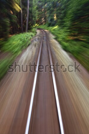 narrow gauge railroad track Stock photo © courtyardpix