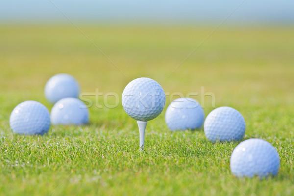 Golflabda egyéb golf golyók ki fókusz Stock fotó © courtyardpix