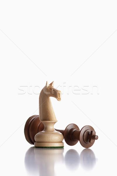 chess knight and king Stock photo © courtyardpix