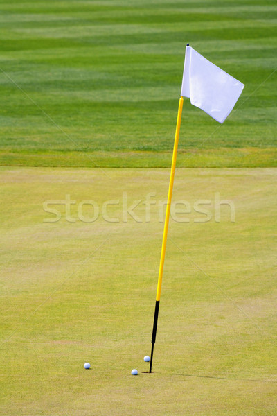 golf hole with a flag Stock photo © courtyardpix