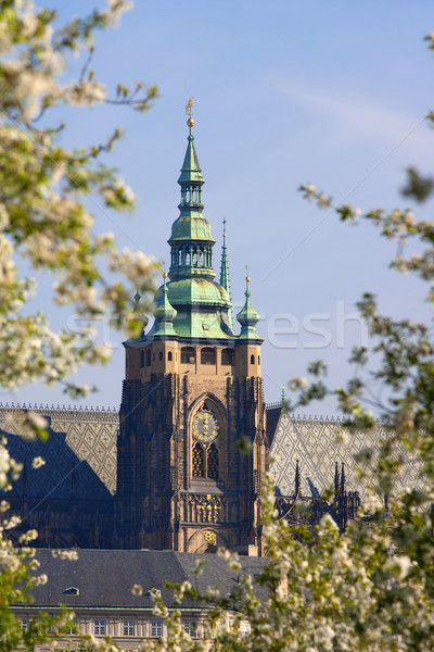 prague, st. vitus cathedral Stock photo © courtyardpix