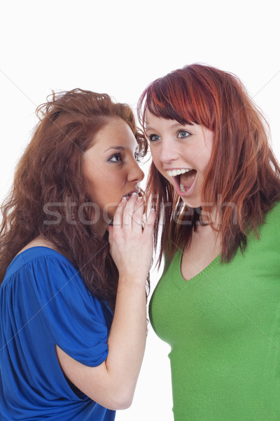 women whispering gossip Stock photo © courtyardpix