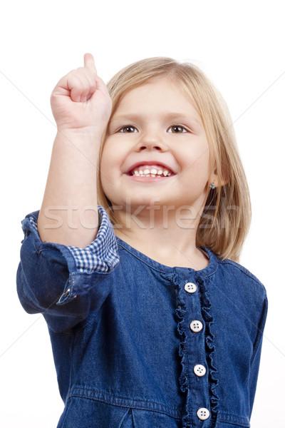 Portré kislány boldog szőke haj mosolyog Stock fotó © courtyardpix