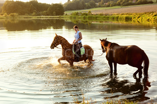 Mulher dois cavalos lago pôr do sol menina Foto stock © courtyardpix