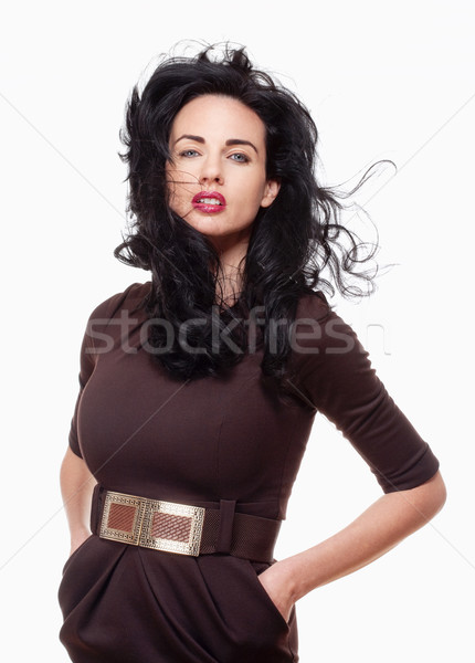 Woman with Black Hair in Elegant Brown Dress Stock photo © courtyardpix