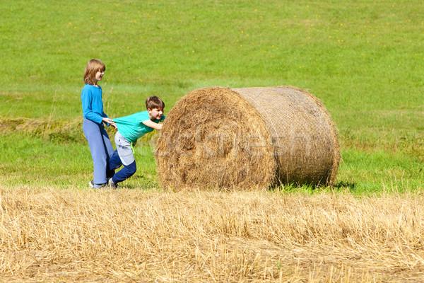 Dois meninos empurrando fardo feno natureza Foto stock © courtyardpix