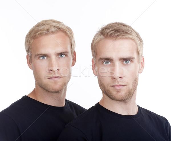 Portré iker fiútestvérek fiatal szőke haj Stock fotó © courtyardpix