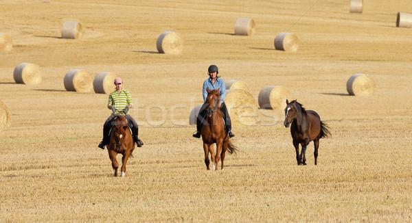 Duas mulheres campo feno mulher menina Foto stock © courtyardpix