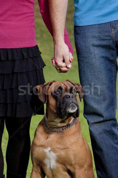 Pár kéz a kézben kutya fiatal állat együtt Stock fotó © courtyardpix