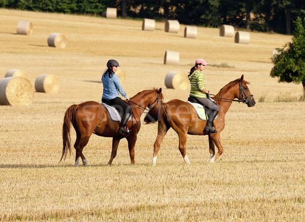 Két nő lovaglás mező széna nő lány Stock fotó © courtyardpix