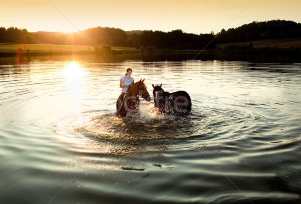Donna due cavalli lago tramonto ragazza Foto d'archivio © courtyardpix