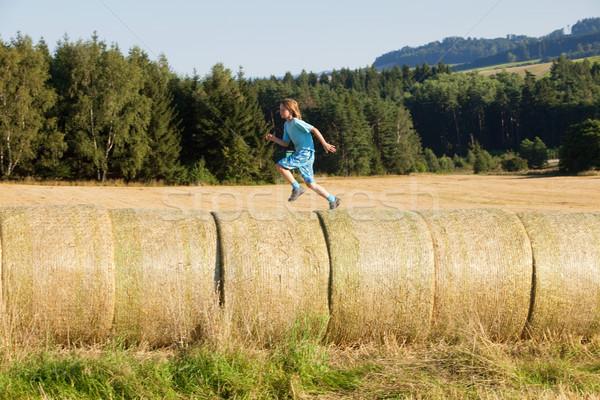 мальчика работает сено лет природы ребенка Сток-фото © courtyardpix