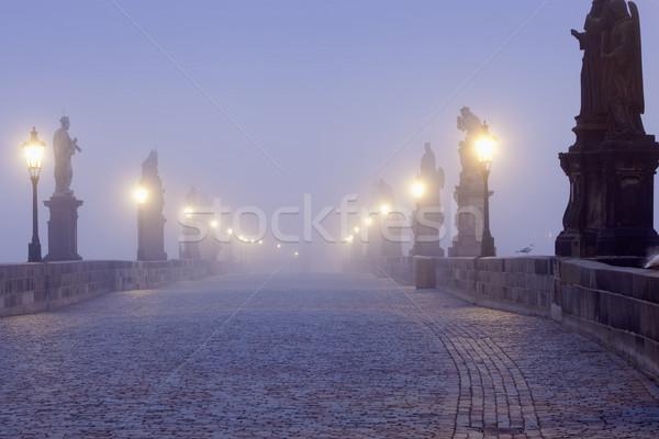 prague charles bridge Stock photo © courtyardpix