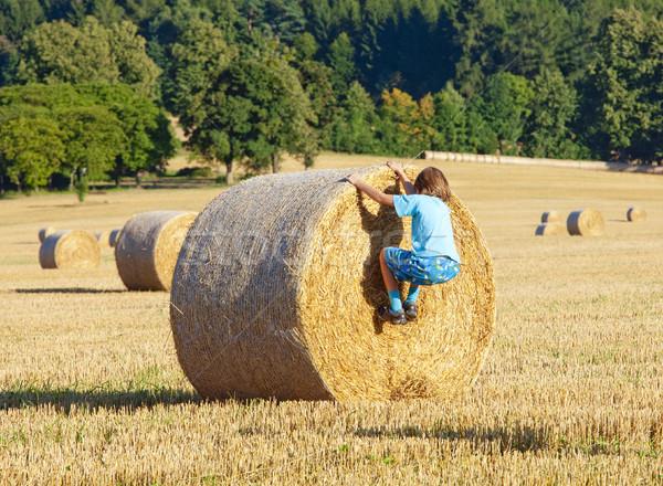 Boy Climbing a Bale of Hay on a Field  Stock photo © courtyardpix