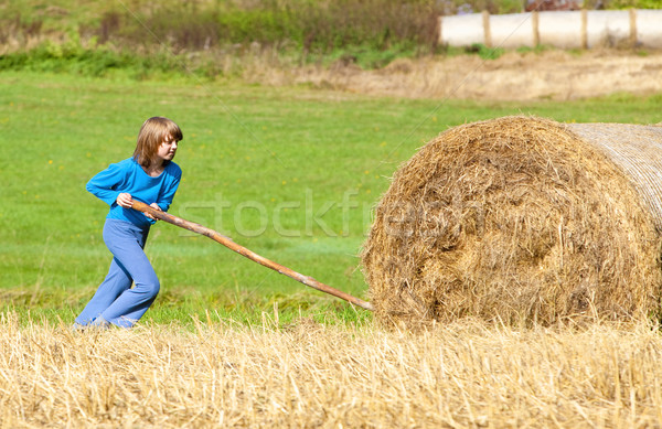 Boy Moving Bale of Hay with Stick as a Lever Stock photo © courtyardpix