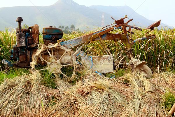 Trekker rijst boerderij water voedsel gras Stockfoto © cozyta