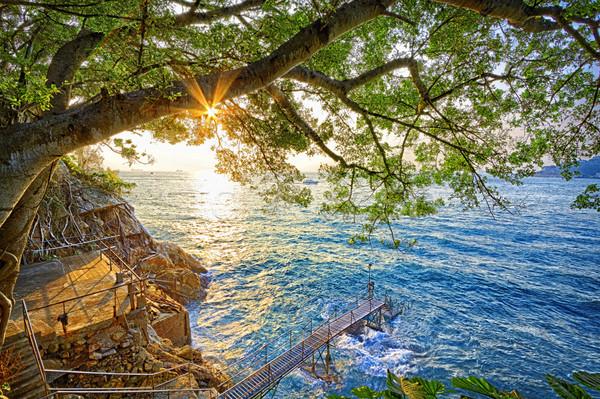 日没 香港 入浴 ビーチ 水 自然 ストックフォト © cozyta
