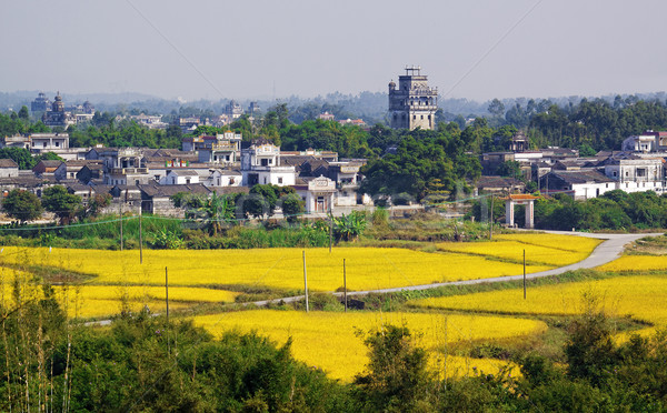 Kaiping Diaolou and Villages in China  Stock photo © cozyta