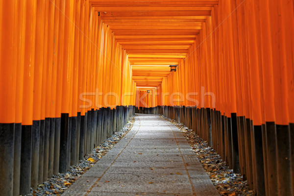 Fushimi Inari Shrine Torii in kyoto Japan Stock photo © cozyta
