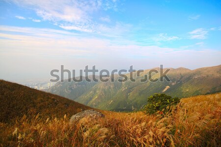 mountain and blue sky Stock photo © cozyta