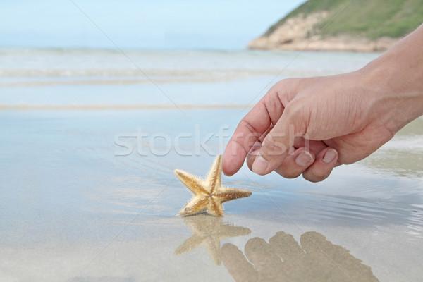 Stockfoto: Hand · aanraken · zeester · strand · kind · reizen