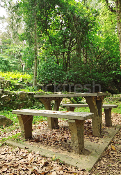 Picnic place in forest  Stock photo © cozyta