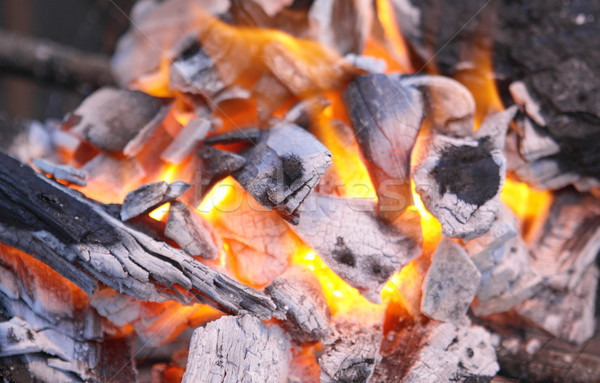 Decaying red coals of a tree in a fire  Stock photo © cozyta