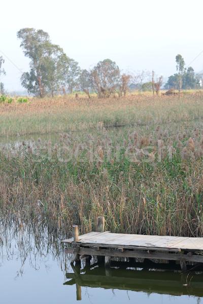 Fából készült móló nyugalmas tó reggel fa Stock fotó © cozyta