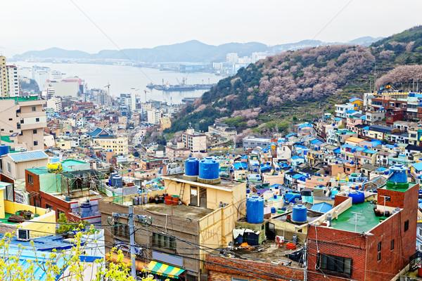 Gamcheon Culture Village in South Korea. Stock photo © cozyta