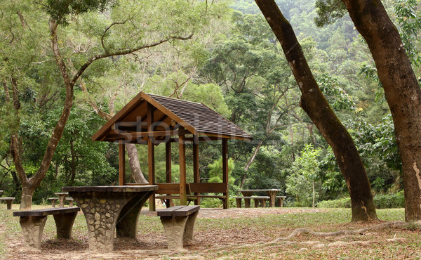 Picnic table and pavilion at countryside  Stock photo © cozyta