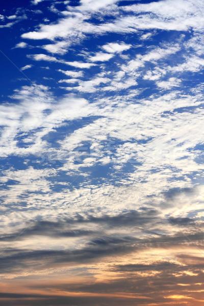sunset sky  Stock photo © cozyta