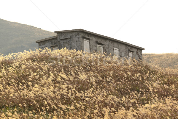 old stone house with grass on the mountain  Stock photo © cozyta
